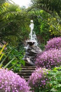 phoca_thumb_l_IMG_4113- giardini mortella ischia
