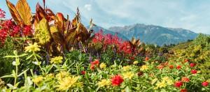 giardino sissi merano foliage