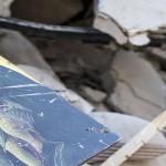 amatrice accumoli terremoto mostra