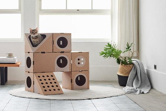 a cat thing casa gatto