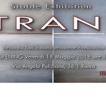 Alessandro Trani stable exhibition Medina Roma