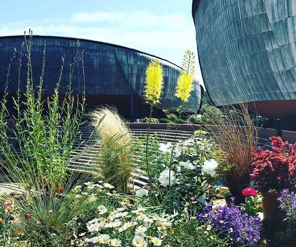 festival verde paesaggio auditorium roma